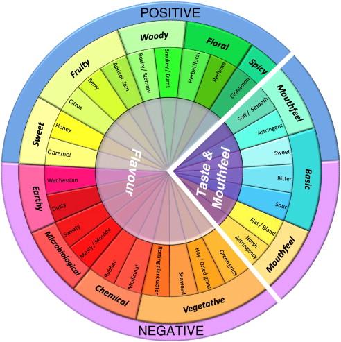 Rooibos Sensory Wheel